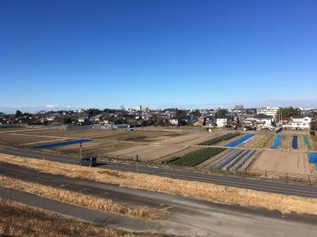 利根川河川敷からの眺め