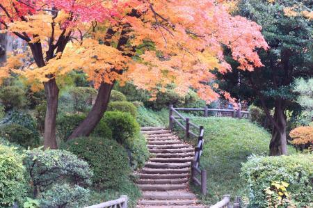有栖川公園の秋