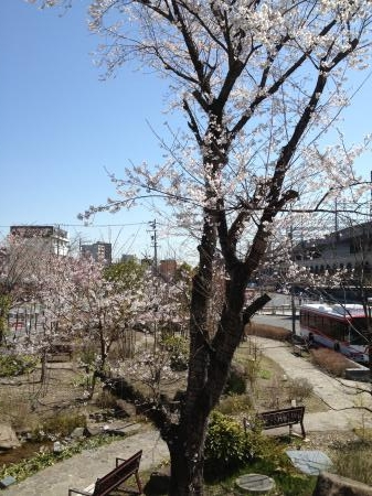 JR岐阜駅のロータリー