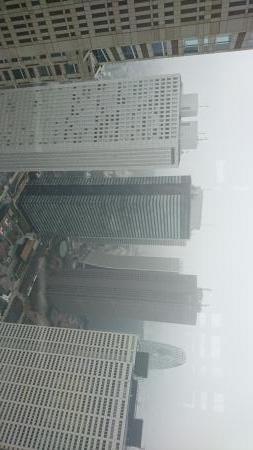 都庁前展望台