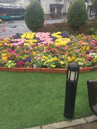 駅の近くに有るショッピングセンターの花壇