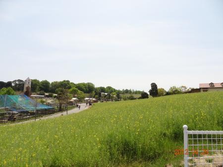 自然いっぱいハーベストの丘